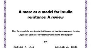 A mare as a model for insulin resistance: A review